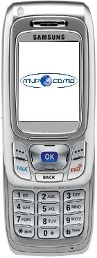 Мобильный телефон Samsung SCH-A800