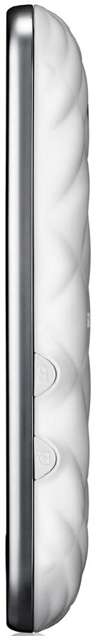 Мобильный телефон Samsung S7070 La Fleur