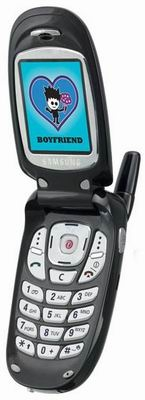 Мобильный телефон Samsung Anna Sui E315